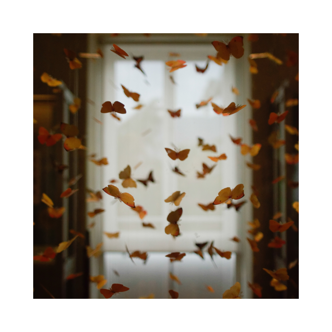 Paper Butterflies in a room dangling from the ceiling